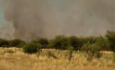 Fuego en la zona de Jagüel del Monte
