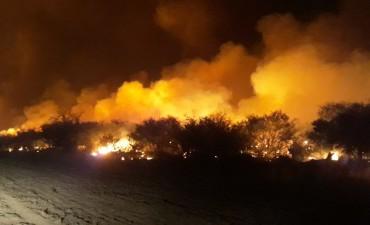 Incendios: se le abrió un sumario a Tierno