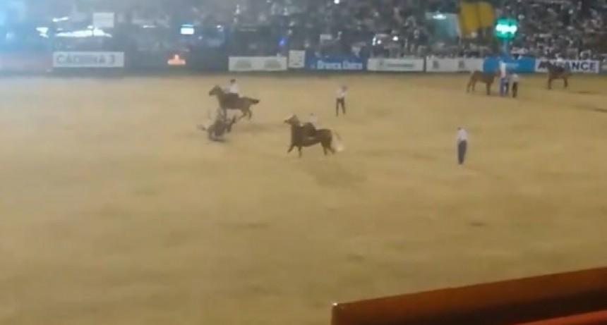 Tuvo la mala suerte que se le salió el estribo, no soltó la rienda y la yegua le cayó encima (VIDEO)