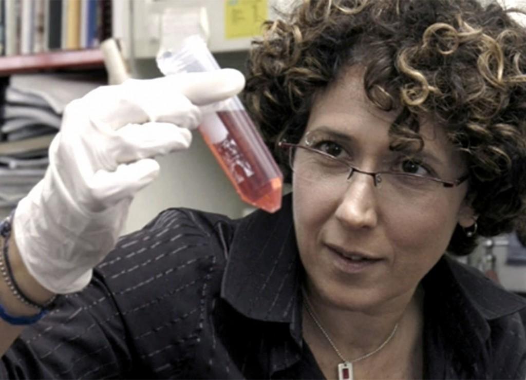 Covid-19: estudio argentino demuestra que 95% de pacientes desarrolló anticuerpos a los 45 días