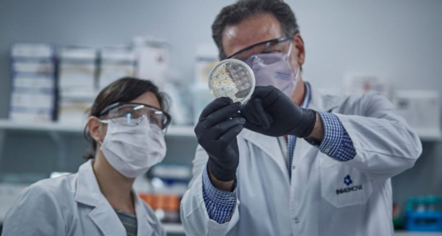 Comienza la distribución del suero equino hiperinmune contra el coronavirus desarrollado en Argentina