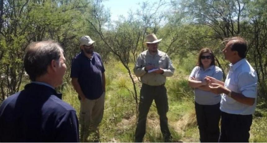 Observan intervenciones en bosques naturales en Victorica, Toay y Guatraché