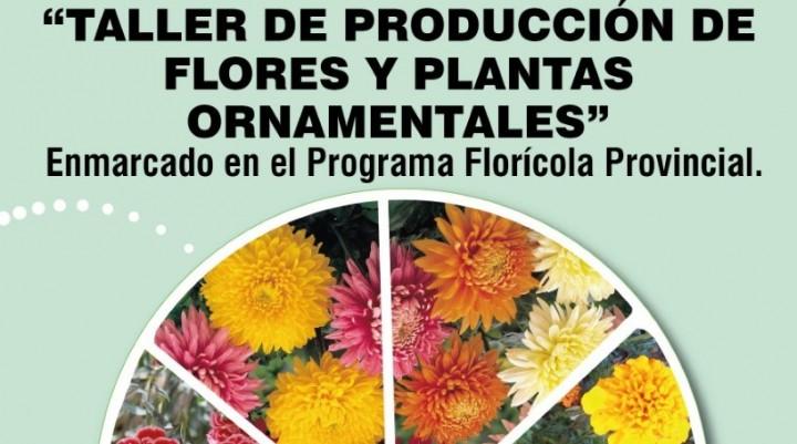 TALLER DE PRODUCCIÓN DE FLORES Y PLANTAS ORNAMENTALES