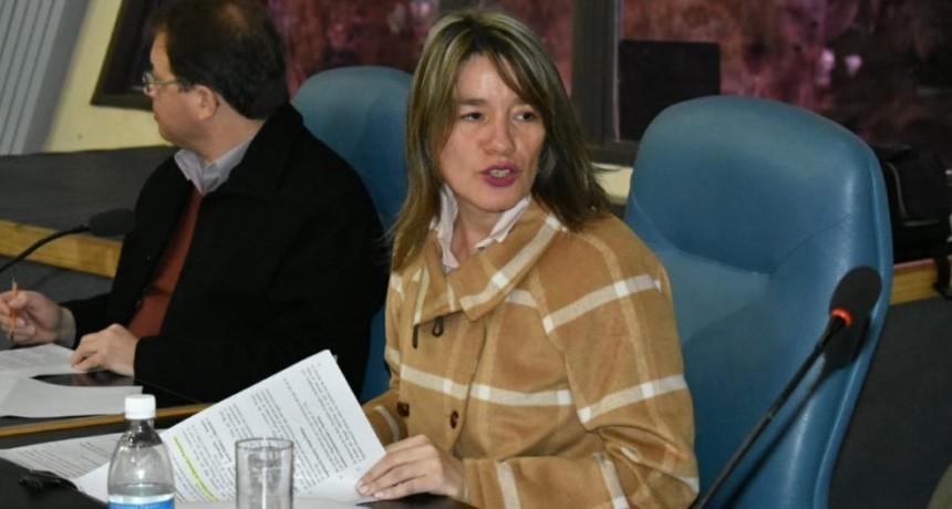 BRONQUIOLITIS: DIPUTADOS APROBARON LA EMERGENCIA SANITARIA POR 90 DÍAS