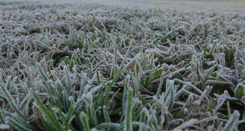 El día más frío del año: en Victorica, la mínima fue de 8,9 grados bajo cero