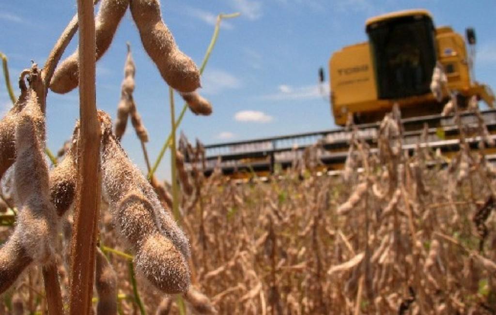 Fin al Fondo de la Soja: La Pampa pierde $350 millones