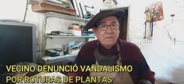 VICTORICA: VECINO DENUNCIA VANDALISMO POR ROTURAS DE PLANTAS