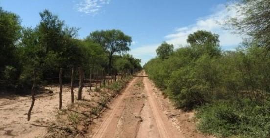 Incendios: la Provincia anuncia que invertirá 100 millones en las picadas cortafuego