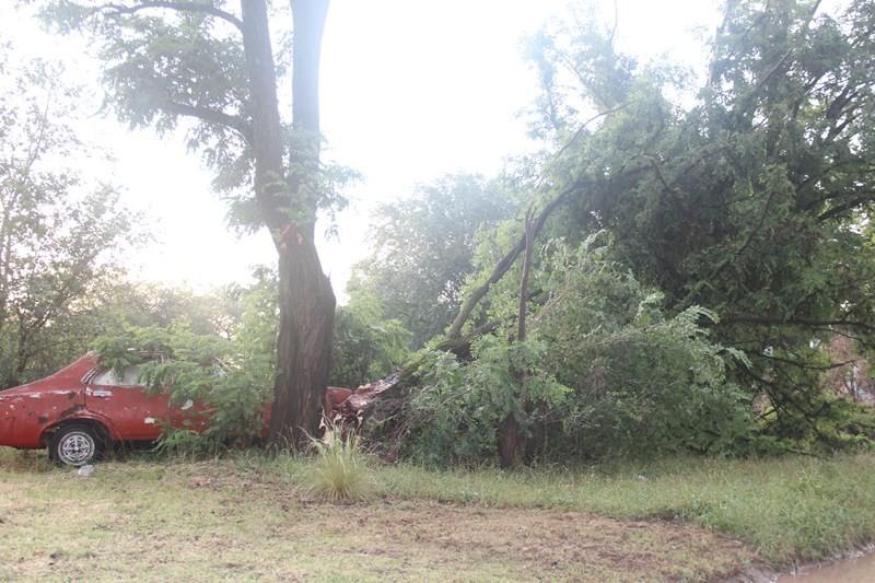 Más de 80 mm en 1 hora, granizo, fuerte viento y evacuados