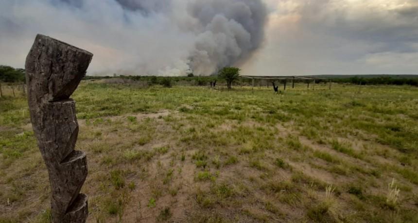 Un incendio devora montes de caldén en cercanías de Leuvucó